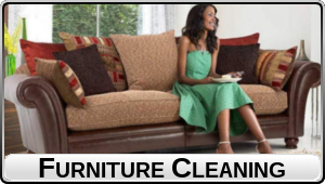Furniture Cleaning - Gentle Steam