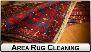 Area Rugs (black text)