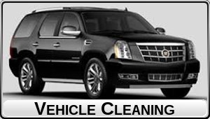 Car Cleaning (black text)